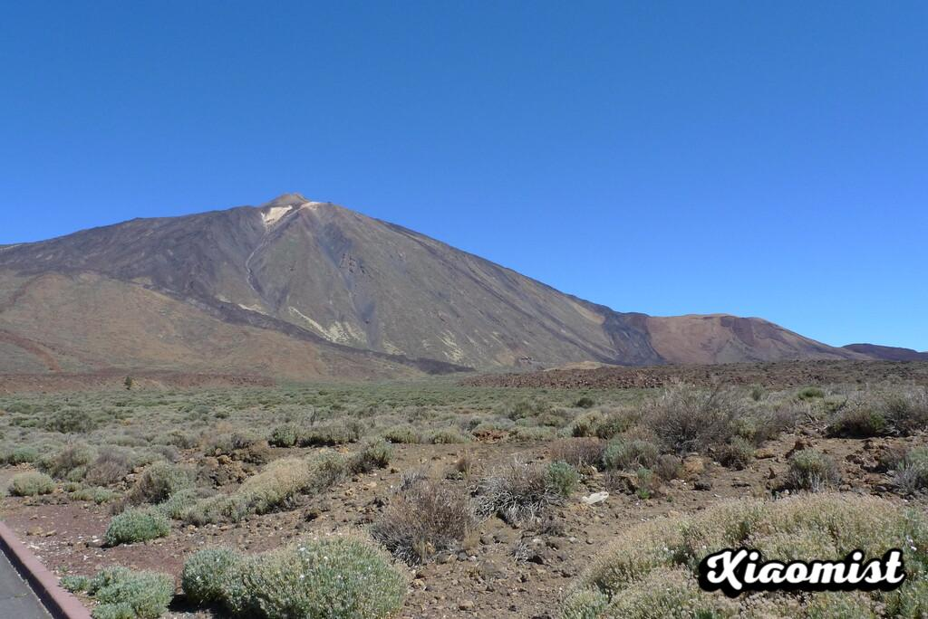 The history of the Tenerife tsunamis that were the icing on the cake of a great volcanic event on Teide: rocky landslides, dust clouds and a 132-meter wave